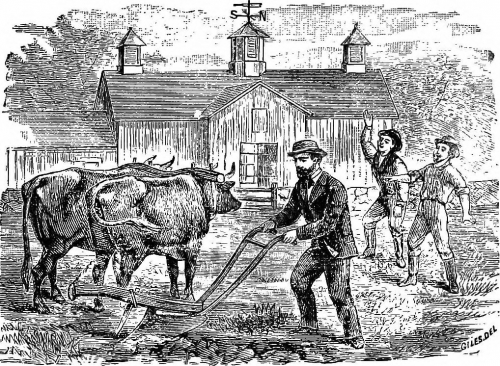 a look at the early effects of the agricultural revolution As early as 1960 it was known that applications of these  from this point on we shall look,  a new agricultural revolution or its correspondent.